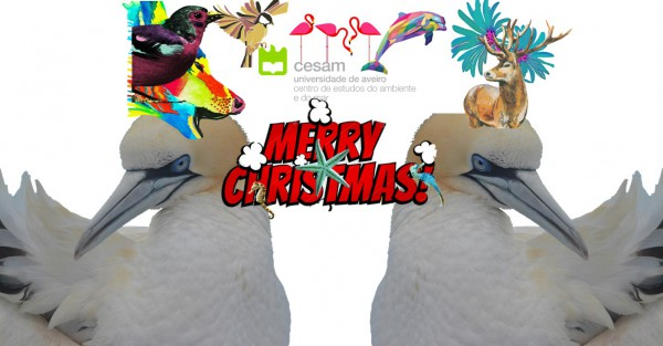 CESAM wishes you all a MERRY CHRISTMAS AND A HAPPY NEW YEAR