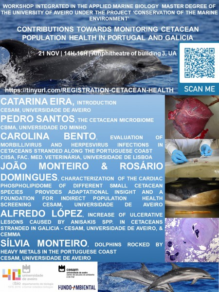Workshop 'Contributions towards monitoring Cetacean population health in Portugal and Galicia' organized by Catarina Eira, CESAM researcher