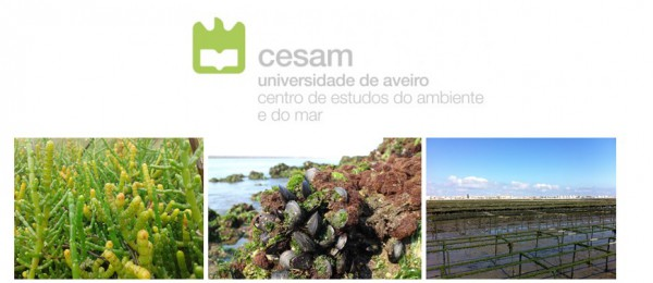 "Workshop ""CESAM's Contribution to Sustainability and Food Security"" 