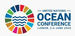 CESAM inputs for the declaration and themes for the 2020 UN Ocean Conference